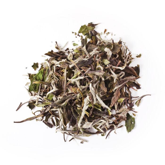 Bai Mu Dan Tea